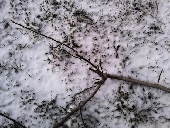 winter_asserts.jpg