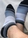 The Wrong Socks
